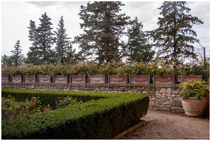 Garden wall on the terrace.
