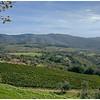 The valley below Castello Vicchiomaggio.