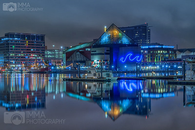 Reflections at the Inner Harbor