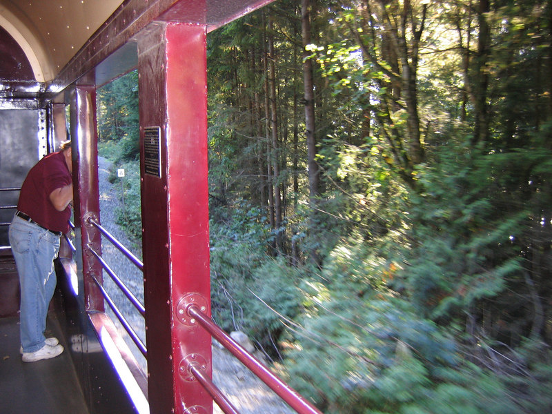 Lots of trees rock. Good views from the observation car.