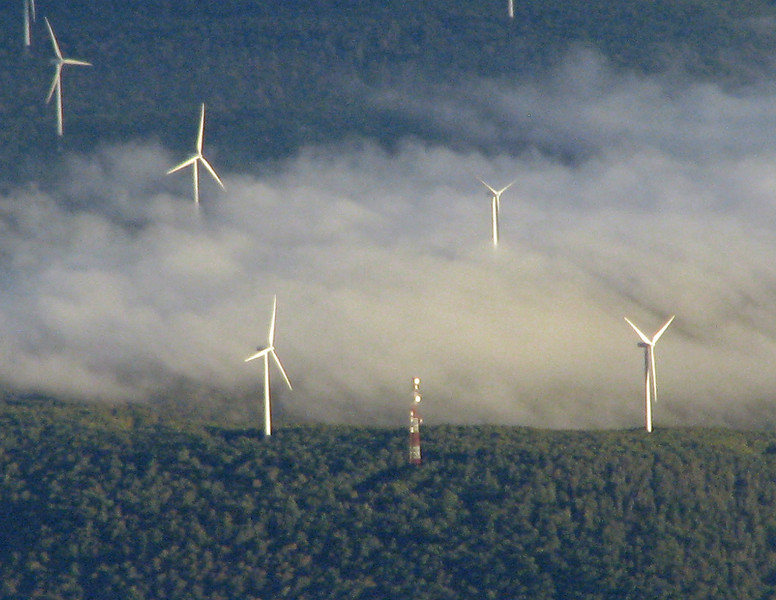 Pennsylvania windfarm in early morning fog.