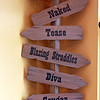 "Naked Winery in Hood River has too much fun! They are a big tease and just a little bit naughty. This sign shows the names of their different wines. I bought a t-shirt labeled ""Penetration"" - their Cabernet. It has quite a colorful description on the back - that I shall wear only in select company! Ha! They have a great gimmick to get people into their tasting rooms. Unfortunately, most of the wines were not to my taste."