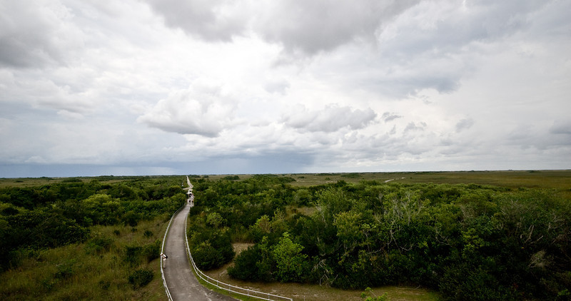 Shark Valley Everglades National Park Scenic view