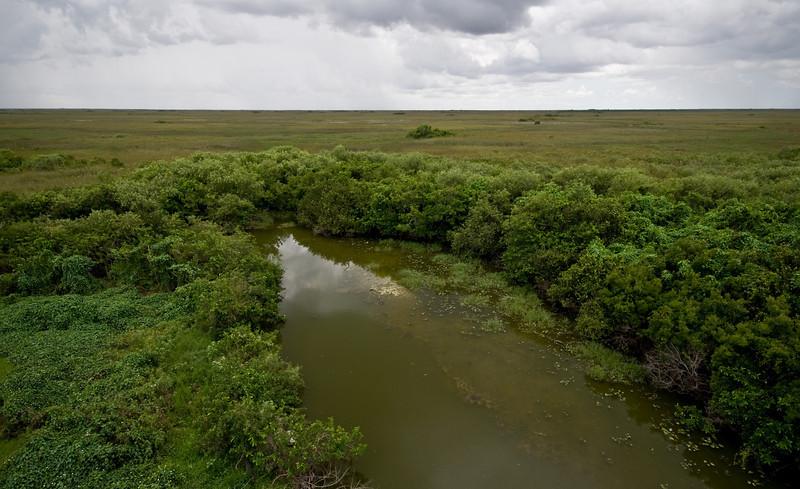 Florida Everglades Shark Valley National Park