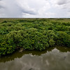 Florida Everglades Shark Valley National Park