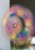 • Harbour Town<br /> • Rainbow Wheels Colorful Vibrant Windmill Spinner<br /> • Natural Wind Making it Spin
