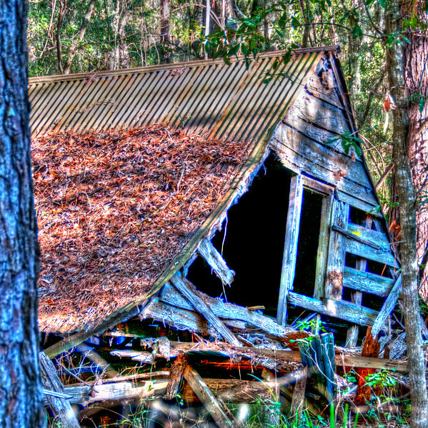 • Daufuskie Island<br /> • Old collapsed building <br /> • Post Tone Mapping