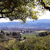 What a great view of Napa Valley from Rutherford Hill.