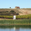 This is the beautiful view just off the tasting room of Terry Hoage Vineyards. Hoage had a long career in the NFL as a defensive back - his wines were big, bold and very nicely balanced.
