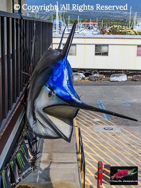 Monster Marlin