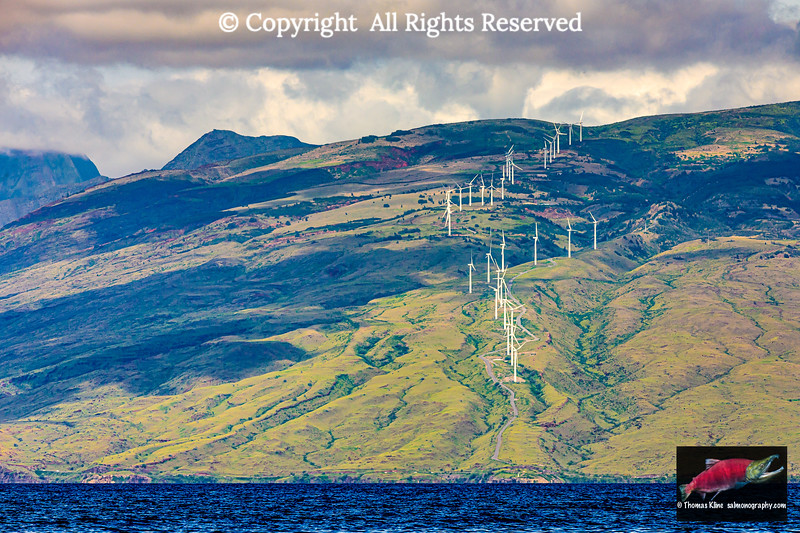 Kaheawa Wind Power,  Maui