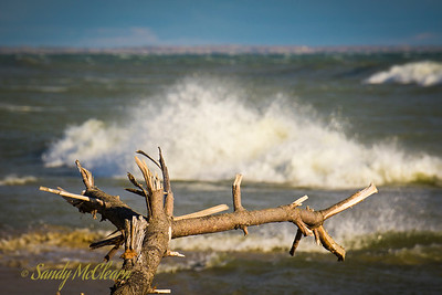 Surf breaks behind a piece of driftwood on a beach in Presqu'ile Provincial Park south of Trenton, Ontario.