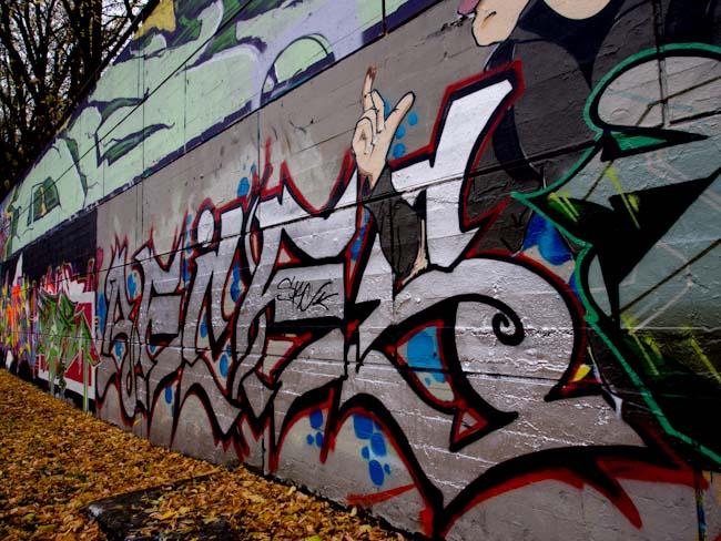 Ottawa Tech Wall