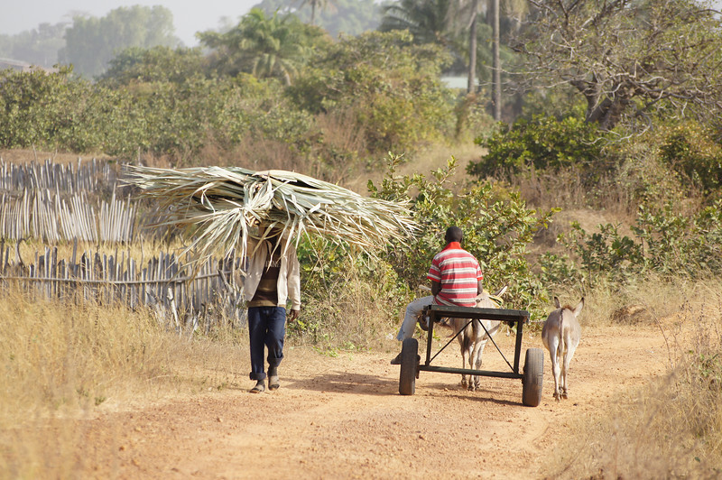 Kartong villagers passing on their business