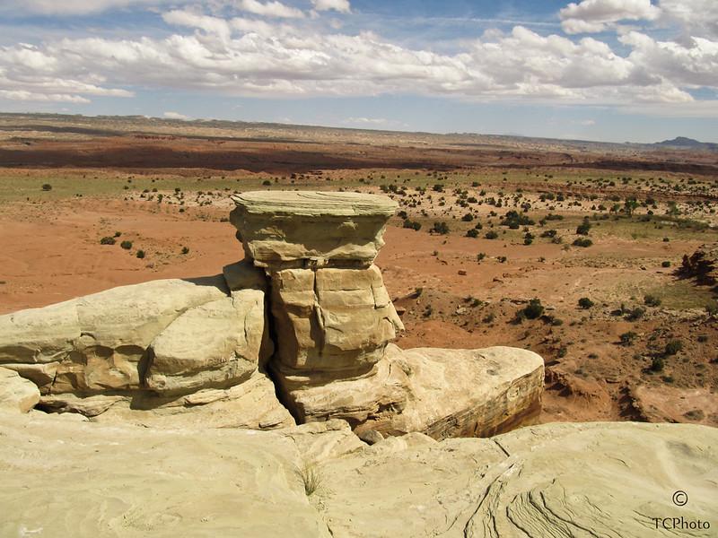 The Utah desert floor.