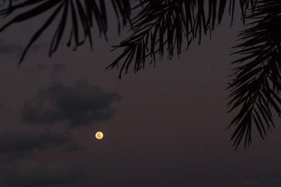 Florida moonrise.