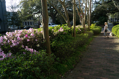 Walking through one of Savannah's many lovely squares.