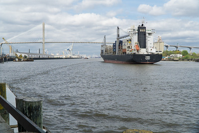 A giant container ship heads toward the large Port of Savannah, west of downtown. It will cross under the modern Talmadge Memorial bridge that connects  Georgia to South Carolina, just across the river.