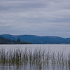 Fern_Ridge_Reservoir_005