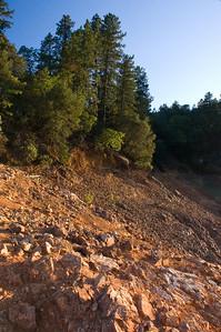 Shasta_Lake_034