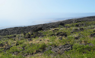 One of the older lava flows, it is amazing how life comes back to these areas