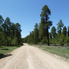 The good National Forest Road to the North Rim.