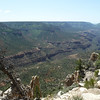 """View into the Grand Canyon from the North Rim in the Kaibab National Forest.  The south rim is visible only as the small filler of the """"V"""" on the right side in the distance."""