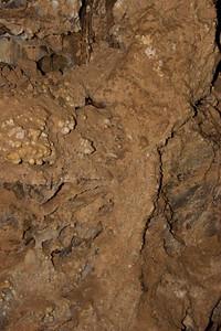 2008-07-05_15-40-40_foss