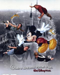 DisneyFlight
