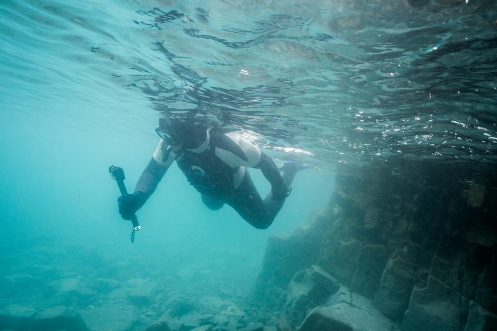 Snorkeling off Tay Bay in Sirmirlik National Park
