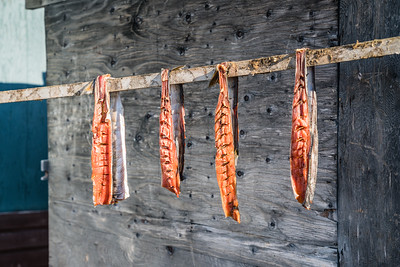 Arctic Char drying