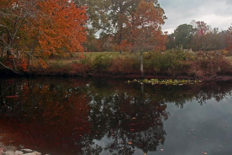 Autumn is coming to Hall's Creek, Nixonton, North Carolina.