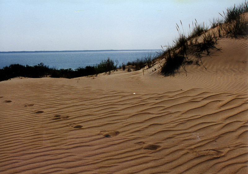 2001OuterBanksDune
