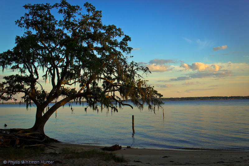 Evening on the Pamlico