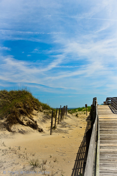Way to the Water, Cocquina Beach, NC