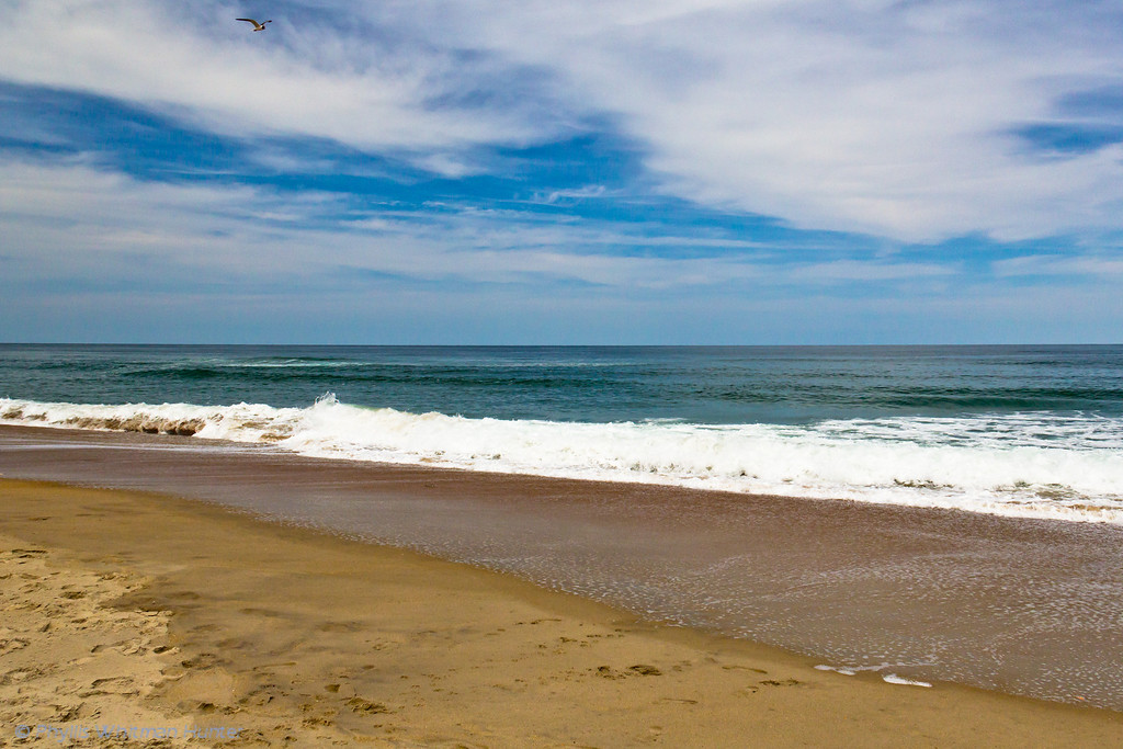 The Beach at Cape Hatteras