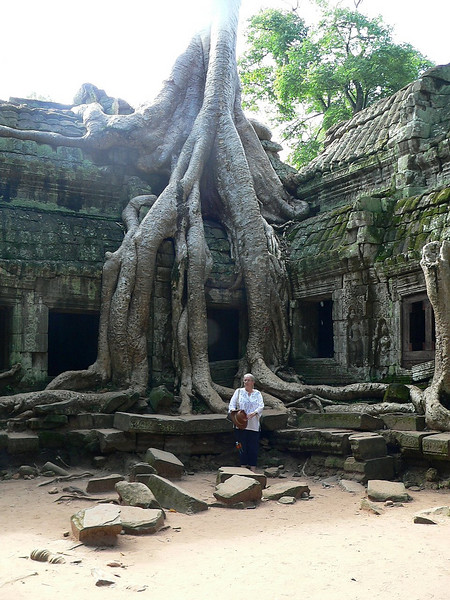 SP in front of the strangler fig roots at the entrance of Ta Prohm Temple.  This shot gives you an idea of the enormity of the roots.