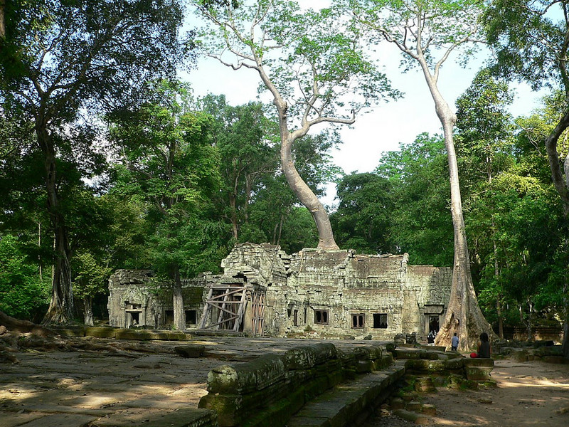 """One of the most popular Angkor temples - Ta Prohm.  This temple was built in the memory of King Jayavarman VII's mother.  When found by the French at the end of the 19th century, they deliberately left this temple in the same condition as it was found - overgrown by strangler fig and silk cotton trees.  Ta Prohm's original name was Rajavihara - """"the royal monastery"""".  In the initial plan, 260 divinities were called for;  many more were added later."""