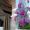 Monday, May 24, 2010 - Orchids, Marina Mandarin Hotel Ground Floor.  Reception is on the 4th Floor.