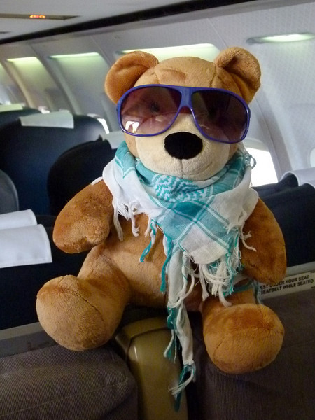Monday 16 November 2010 -  Monarch Airline's mascot teddie is ready for our Arabian adventure on the spice island of Zanzibar, Tanzania.