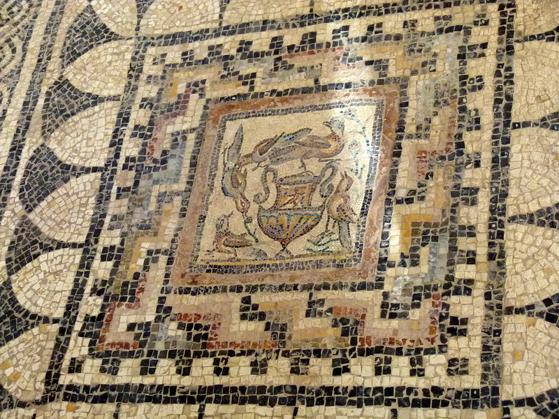 Another fine mosaic in the Museum at Sabratha.