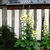 Ightham Mote courtyard garden.