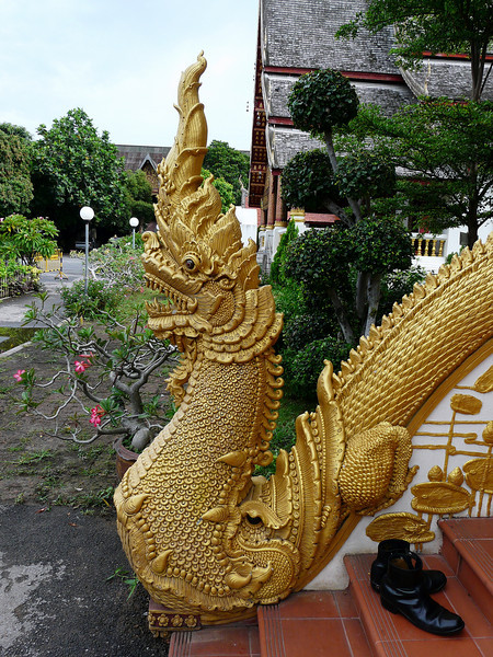 "Wat Chiang Man is the oldest temple in the city of Chiang Mai. It is believed to have been built by the founder of the city, King Mengrai, on the spot he stayed while building Chiang Mai, more than 700 years ago.  This staircase dragon is on ""protection detail""."