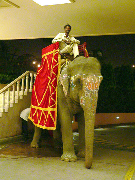 2/6/05 -  Welcome to The Taj Palace Hotel, New Delhi