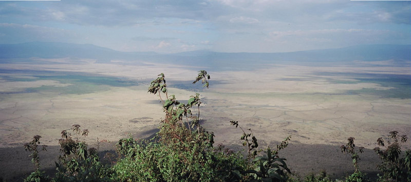 """""""Stitched"""" panoramic shot of Ngorongoro Crater taken from the rim.  Ngorongoro Crater is the world's largest unbroken volcanic caldera. The Crater, which formed as the giant volcano exploded and collapsed on itself around 2 million years ago, is 610m deep and the floor is 260km². The steep sides of the crater mean that it has become a natural enclosure for a very wide variety of wildlife, including most of the species found in East Africa. The Munge Stream drains Olmoti Crater to the north, and is the main water source draining into Lake Makat, the seasonal salt lake in the center of the Crater. The Lerai Stream (which is used for the tourist hotels and campgrounds) drains the humid forests to the south of the Crater, and it feeds the Lerai Forest on the Crater floor - when there is enough rain, the Lerai drains into Lake Makat as well. The other major water source in the Crater is the Ngoitokitok Spring, near the eastern Crater wall. There is a picnic site here open to tourists, and a huge swamp fed by the spring, and inhabited by hippopotamus, elephants, lions, and many others. Many other small springs can be found around the Crater floor, and these are important water supplies for the animals and local Masaai, especially during times of drought.<br /> <br /> Aside from herds of zebra, gazelle and wildebeest, the crater is home to the """"big five"""" of rhinoceros, lion, leopard, elephant and buffalo. The crater plays host to almost every individual species of wildlife in East Africa, and there are an estimated 25,000 animals within"""