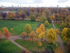 Autumnal colours of the Kensington Gardens - taken from window of Room 638 at Royal Garden Hotel, Kensington.