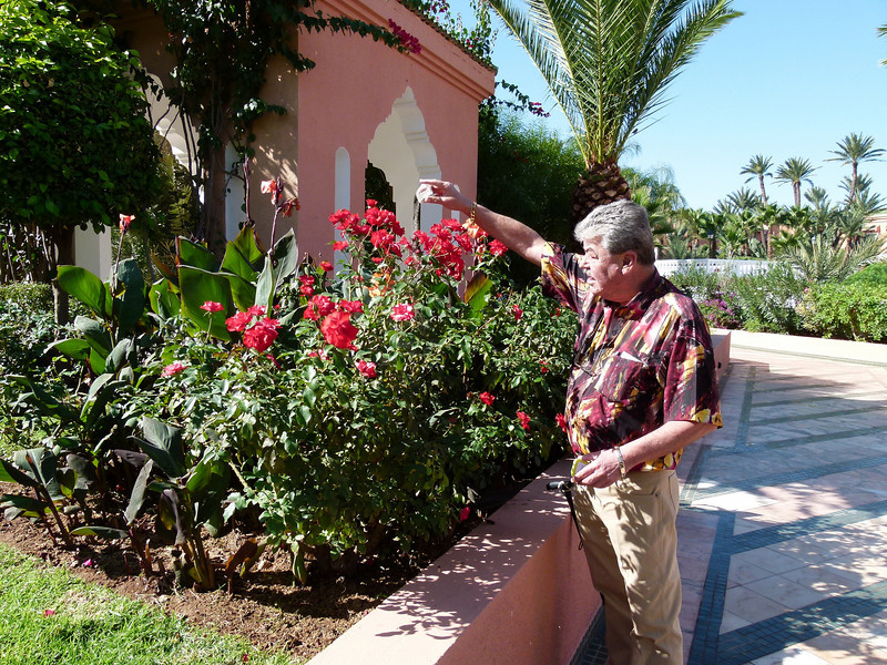 Sprinkling some of Jane Lawson's ashes in the rose garden at Palmeraie Golf Palace, Marrakech.   Jane was Greg's god daughter and she passed away at the  tender age of 32 in Edinburgh, Scotland in June 2010.  Her stated wish to her father, Geoff, was that her ashes be spread to the four winds.  We did our best to honour Jane's last wish on this trip to Africa.