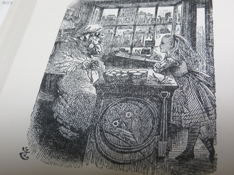 """I walked down St. Aldate's to Alice's Shop.  This is a Tenniel illustration from """"Through the Looking Glass.""""  Alice goes into a yarn shop and finds a large sheep behind the counter.  He based his drawing on a real shop on St. Aldate's St. across from Christ Church College.  Today that shop sells all kinds of """"Alice"""" memorabilia.  The only difference is that Tenniel reversed the shop; in real life the window is to the right of the door."""