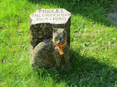 """There's only one possible reaction to this one:  """"Awwww....""""  I believe poor Tiddles fell from the church roof and, contrary to the mythology about cats, apparently did not right himself or herself and land safely on his feet."""