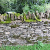 A typical Cotswold wall.  The stones are put together without mortar, and a vertical row of stones is placed along the top.